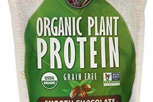 Organic Plant Protein Powder Smooth Chocolate Garden of Life