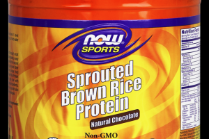 Sprouted Brown Rice Protein Chocolate Now Sports