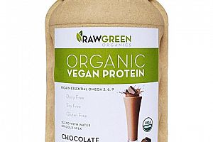 Organic Clean Plant Protein Chocolate Raw Green Organics